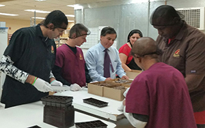 Group Supported Employment program at Fascia's Chocolates